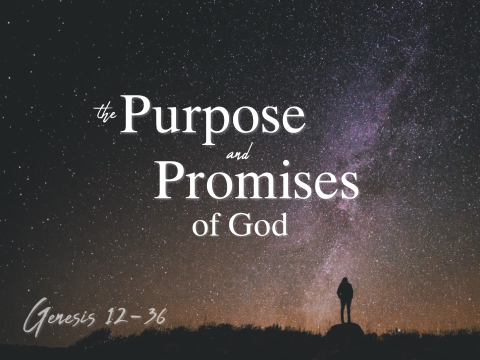 Purpose and Promises.JPG